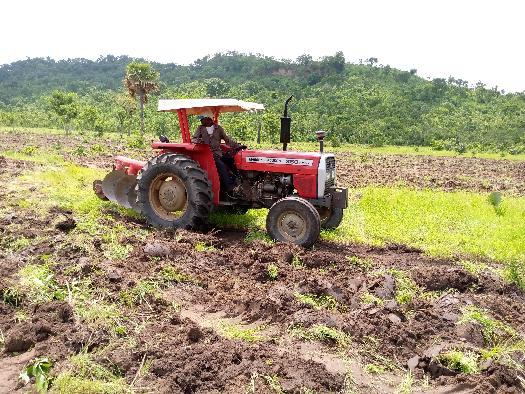 Préparation du sol pour la culture du soja bio