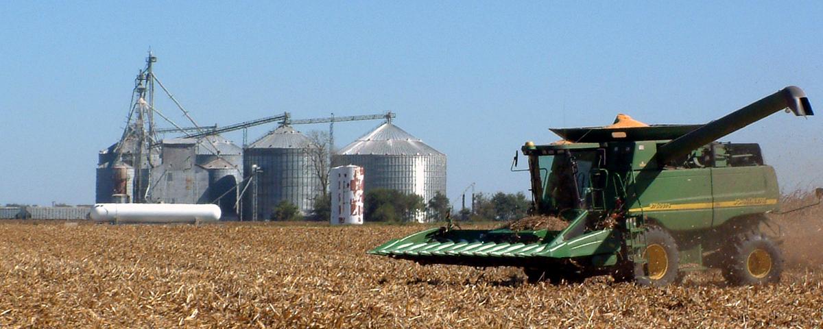 Les règles de base du stockage à la ferme