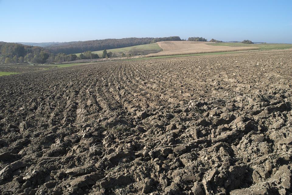 Travail simplifié du sol, un ensemble de techniques culturales contre l'érosion des sols