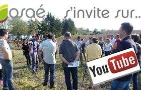 OSAÉ s'invite sur Youtube ! Pensez à vous abonner pour rester informés !
