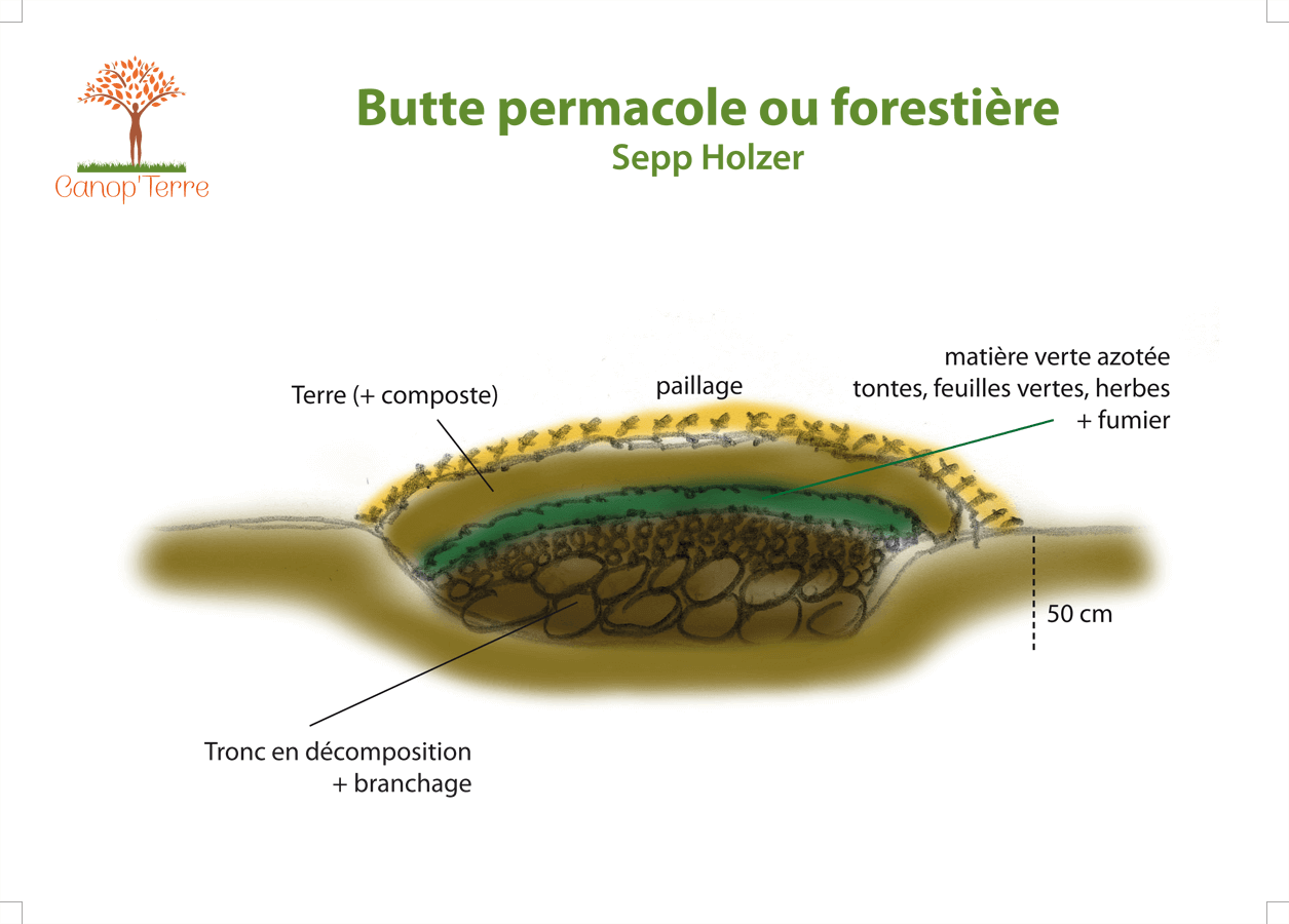 Butte permacole ou forestière Sepp Holzer