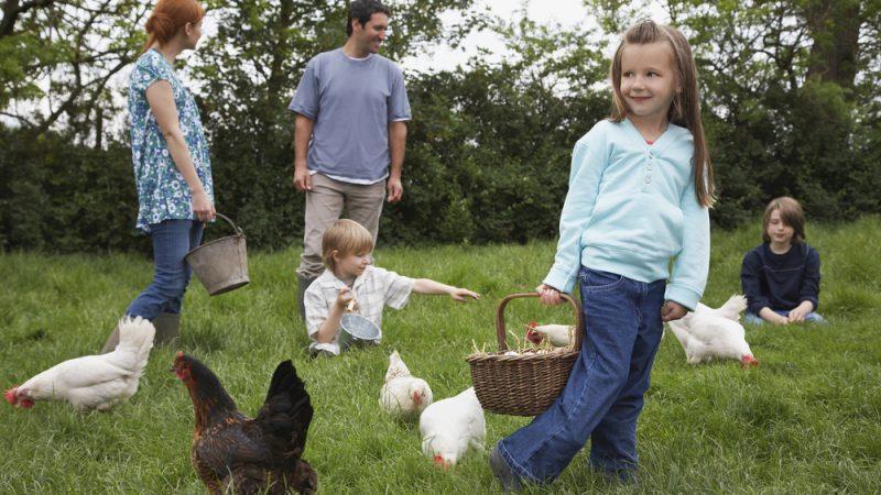 Agriculture bio en Italie