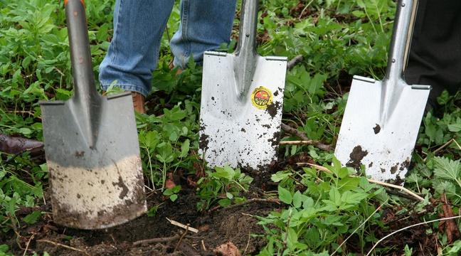 Agriculture bio et jardinage