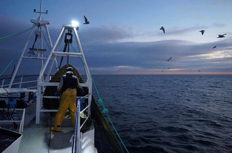 La consommation de poissons continue à augmenter mais plus lentement