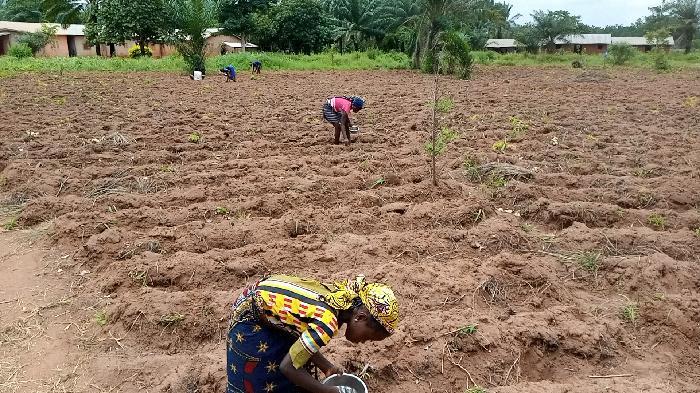 Soycain Bénin et GDAD-ONG