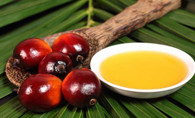 La Chronique Matières Premières Agricoles: L'huile de palme au 14 novembre 2019