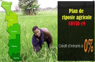 Au Togo le plan de riposte agricole au Covid-19 est annoncé