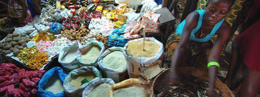 Au liberia, le ministère de l'Agriculture (MOA) a adopté un plan national d'urgence de sécurité alimentaire
