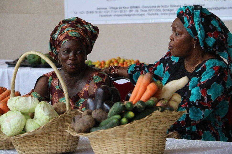 Au sénégal l'initiative « le panier de la ménagère » lancée pour riposter contre le Covid-19: Un pont entre les producteurs de produits agricole et locaux avec les ménages