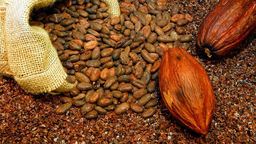 La Chronique des  Matières Premières Agricoles: Le cacao au 4 mai 2020