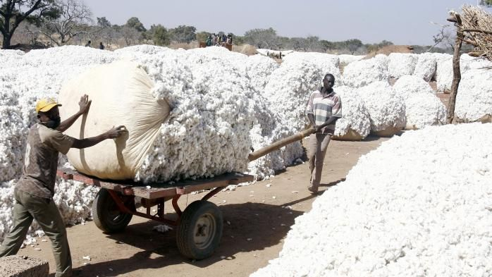 La Chronique des  Matières Premières Agricoles: Le coton au 4 mai 2020