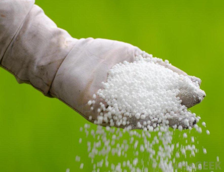Production d'engrais au Ghana: Pour soutenir l'agriculture, Ho Technical University produira de l'urée