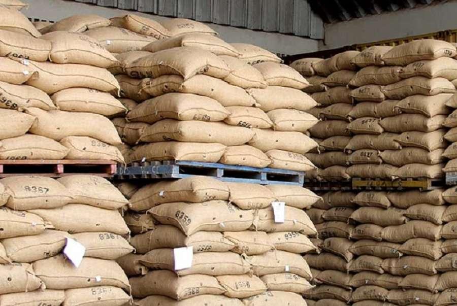 L'exportation de cacao au Nigeria impactée par le Covid-19