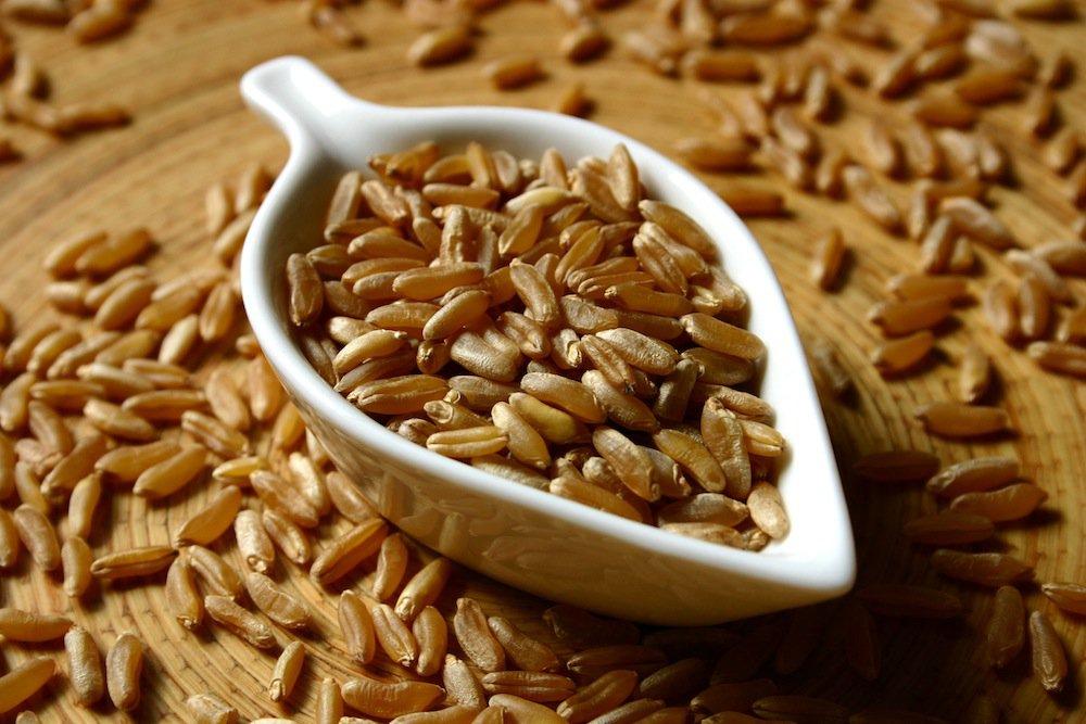 Prorogation de la suspension des droits de douane sur le blé tendre