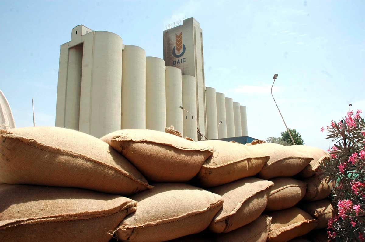 L'importation de céréales continue par chuter en Algérie