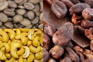Le Nigeria devrait perdre plus de 160 millions de dollars en exportations de cacao et de noix de cajou en 2020.