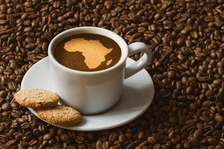 Une consommation africaine de café en hausse de 0,8%