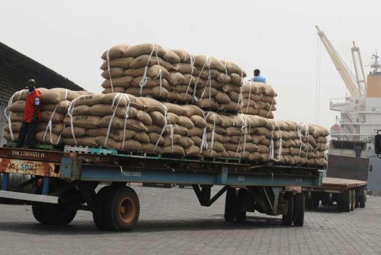 Les arrivées de cacao vers les principaux débouchés d'exportation ont baissé en Côte d'Ivoire
