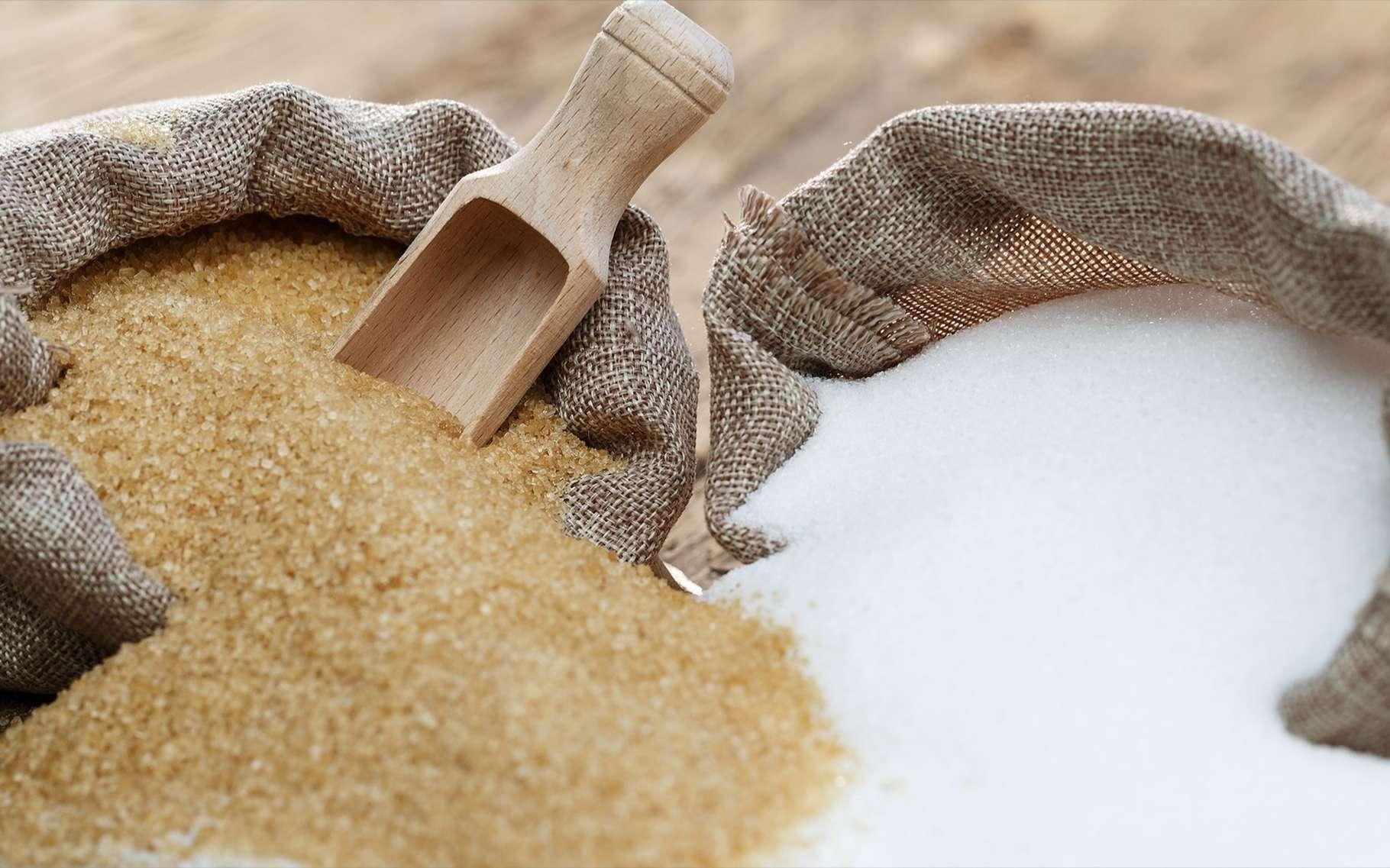 La chronique des matières premières agricoles: Le sucre au 14 mai 2020