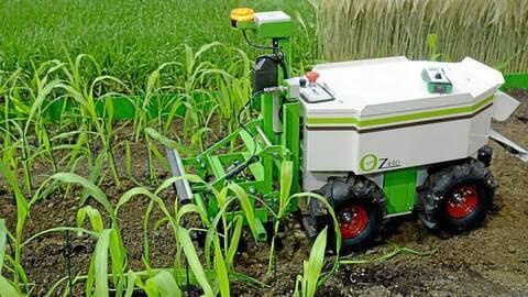 Innovation agricole: L'AATF et le Nepad s'accordent pour stimuler l'innovation agricole en Afrique