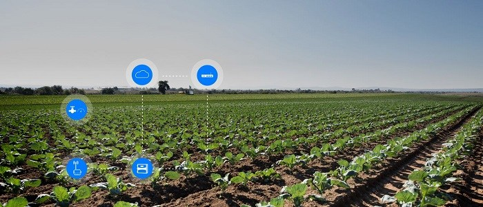 Subvention pour l'agriculture intelligente en Afrique de l'Est, de la part de la Climate Innovation and Investment Facility (CIIF)