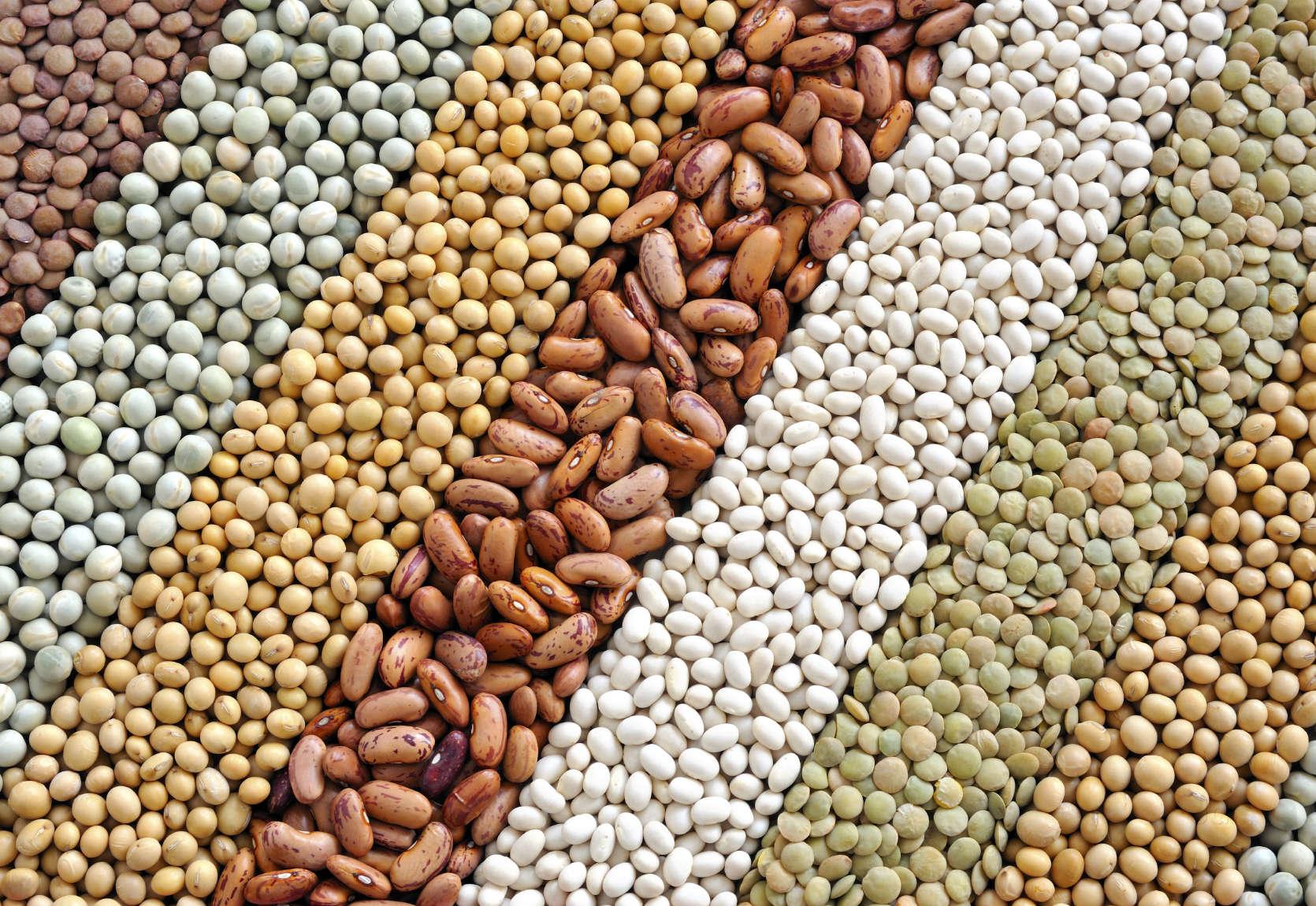 Secteur  sémencier en Ouganda:  Naseco l'entréprise de production de semence a un nouvel actionnaire