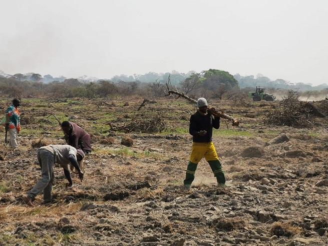 Financement agricole: En Côte d'ivoire, l'exécutif manifeste encore une fois son soutien au secteur agricole