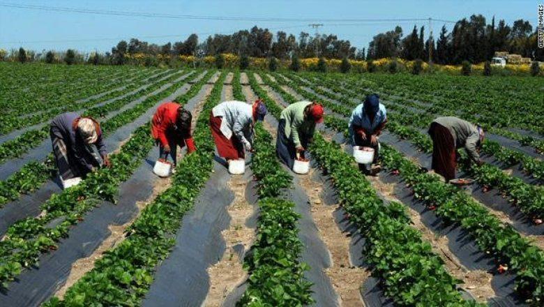 À travers son rapport L'ITFC  fait valoir son attachement au financement  agricole en Afrique et ailleurs