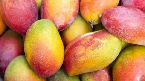 Quel est l'impacte de la covid-19 sur la filière mangue en Afrique de l'ouest? ( Vincent Omer-Decugis, donne son avis)