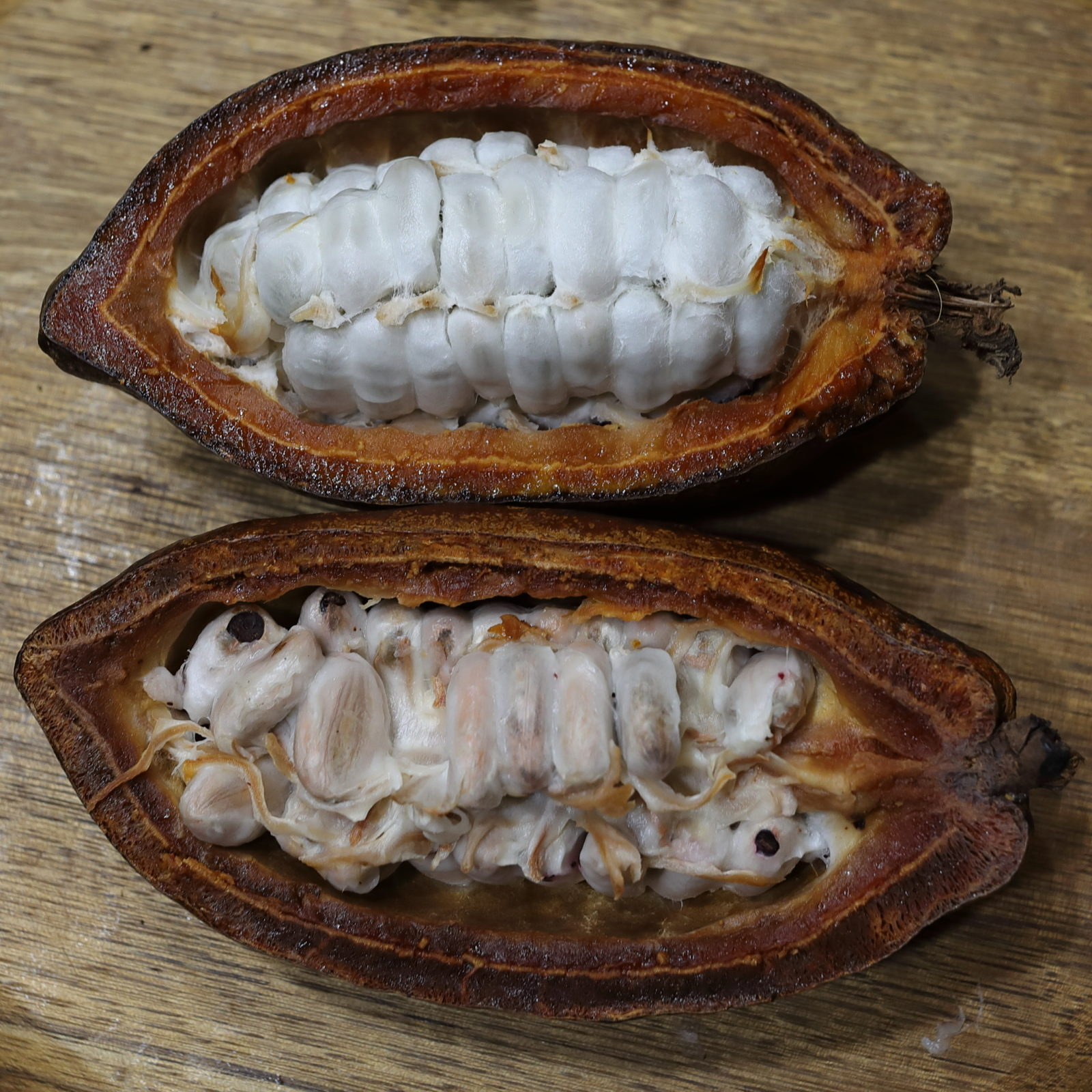 Chronique des matières premières agricoles: Le cacao au 28 mai 2020