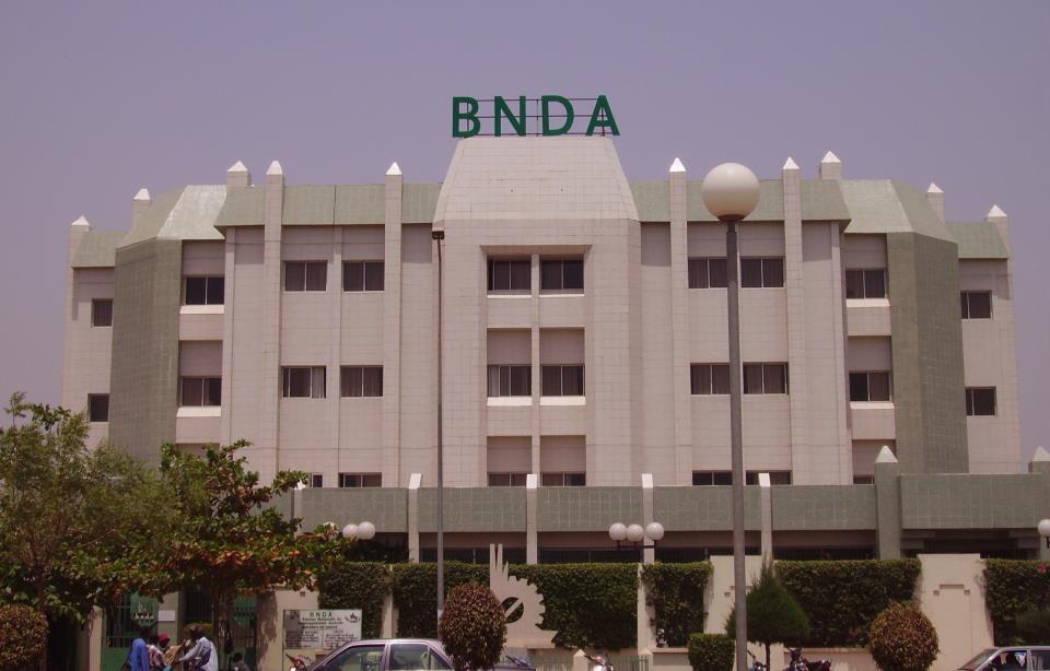 Le financement agricole au Mali: La BNDA, un acteur de premier plan du secteur agricole malien