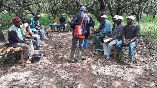 La vulgarisation agricole pour  l'adoption de pratiques agricoles et de technologies bénéfiques  au Nigeria