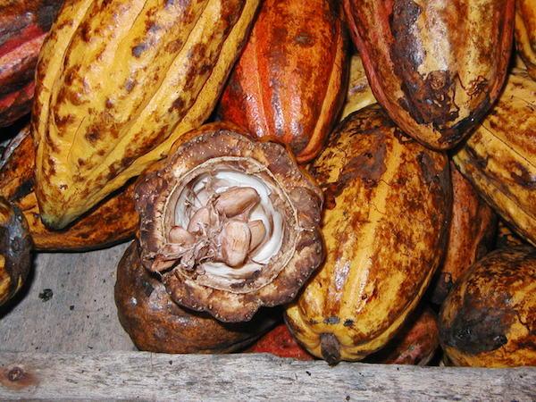 [Chronique] Les matières premières agricoles: Le cacao au 4 juin 2020