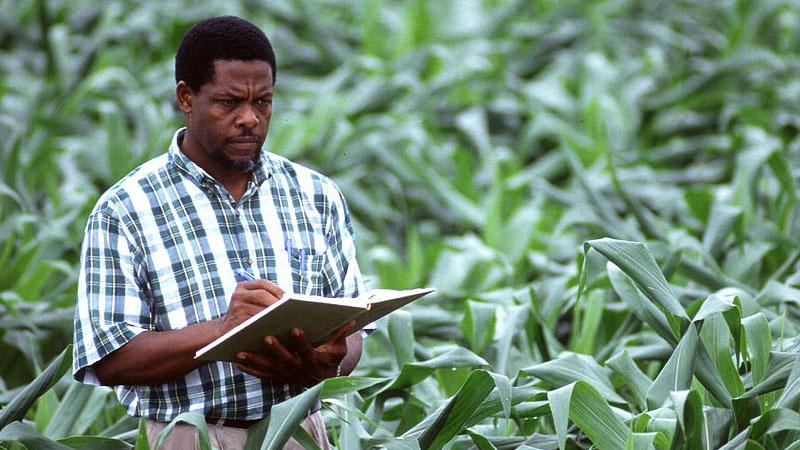 Quels obstacles inhérents à la recherche agricole en Afrique?