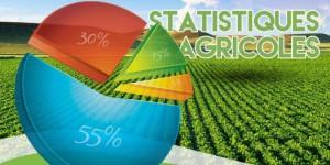 Statistiques agricoles en Afrique
