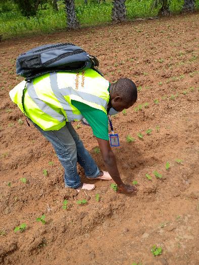 Soycain- Togo/ ATCHADE,Agronome Savane