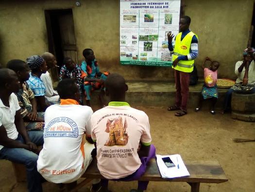 Formation de groupement des producteurs du soja biologique