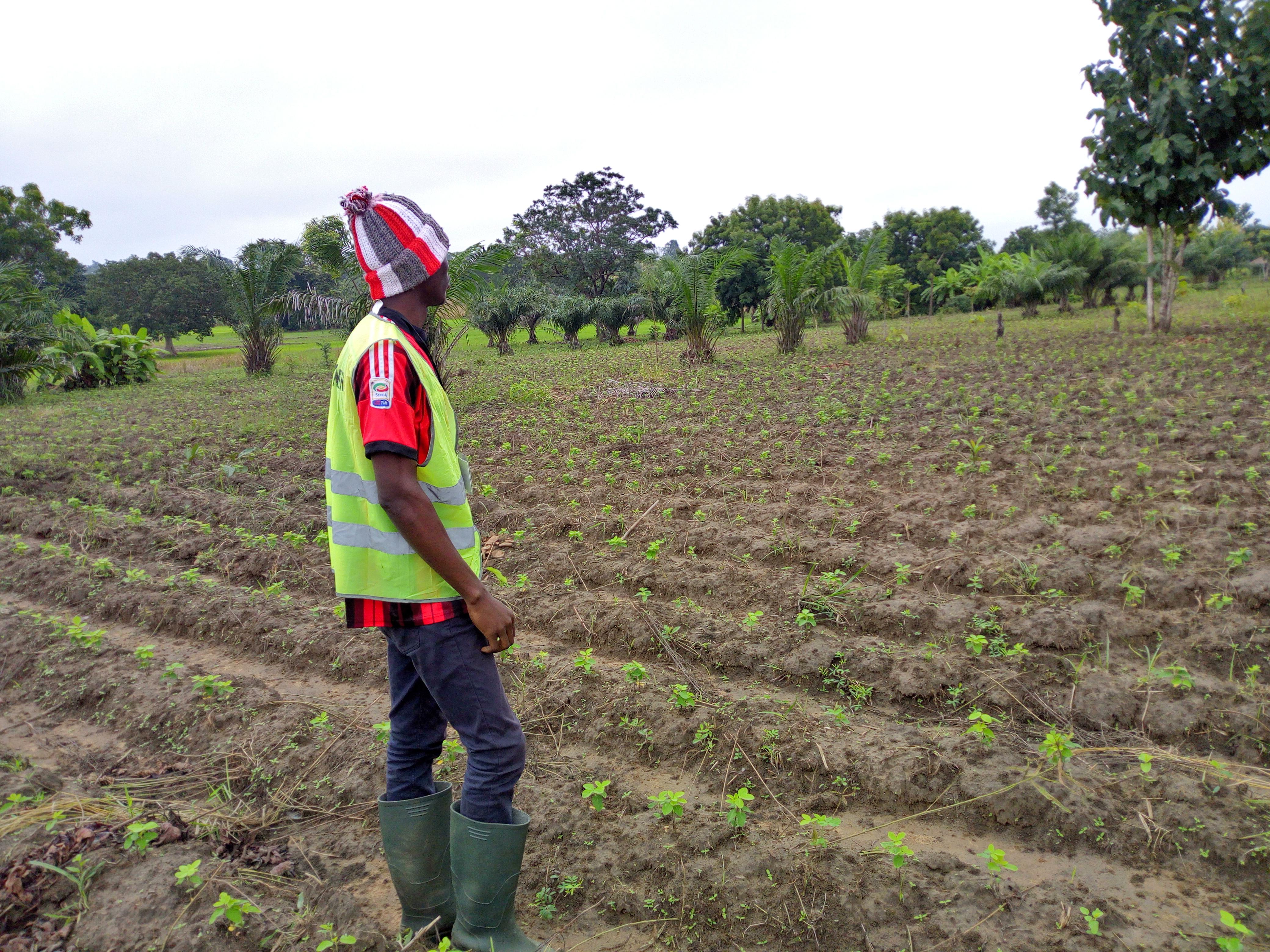 SOYCAIN-BENIN: C.I Dassa Contrôle et inspection