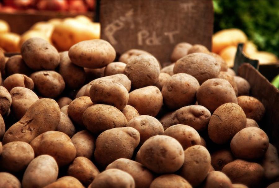 La filière de pommes de terre en France demande une aide d'urgence de 35 millions d'euros