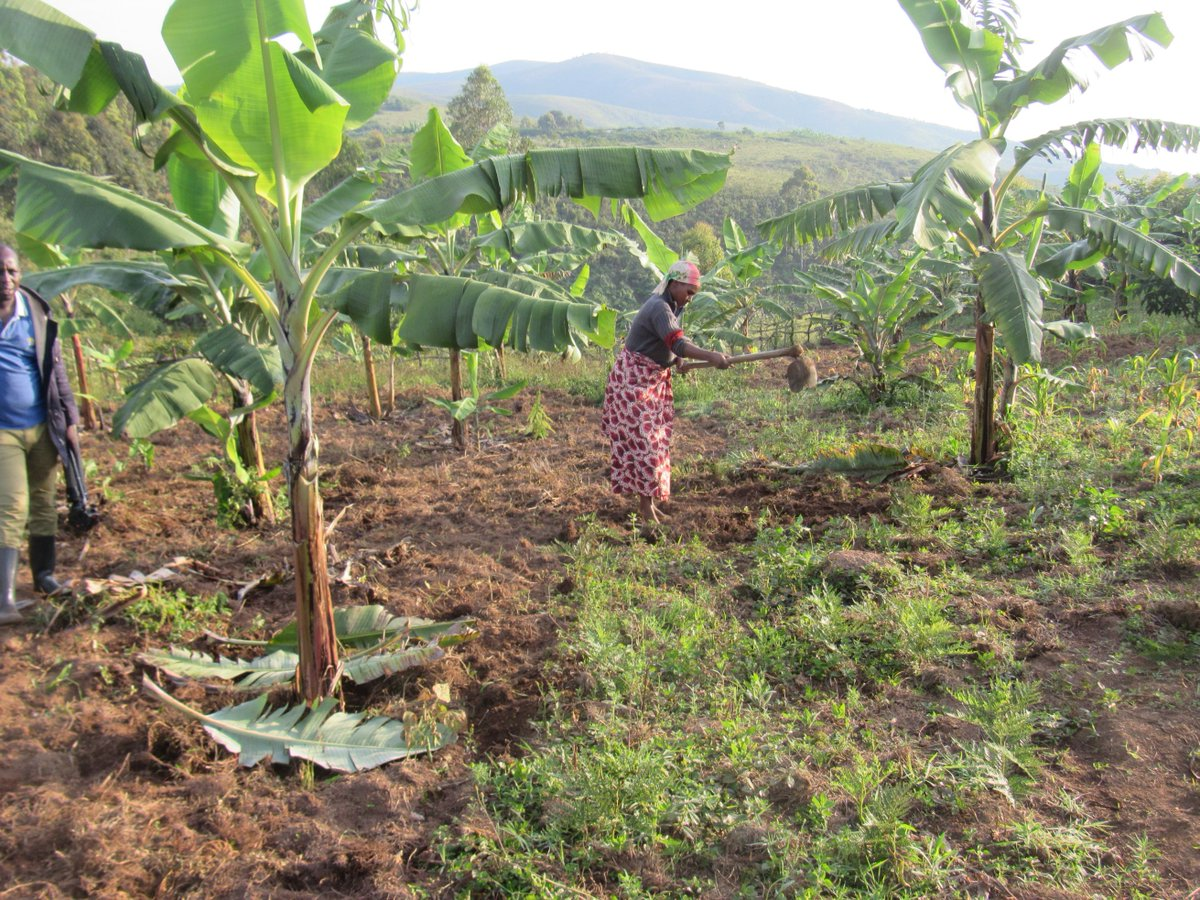 La RDC n'est pas éligible à l'allocation de 176 millions USD du FEM aux neuf pays