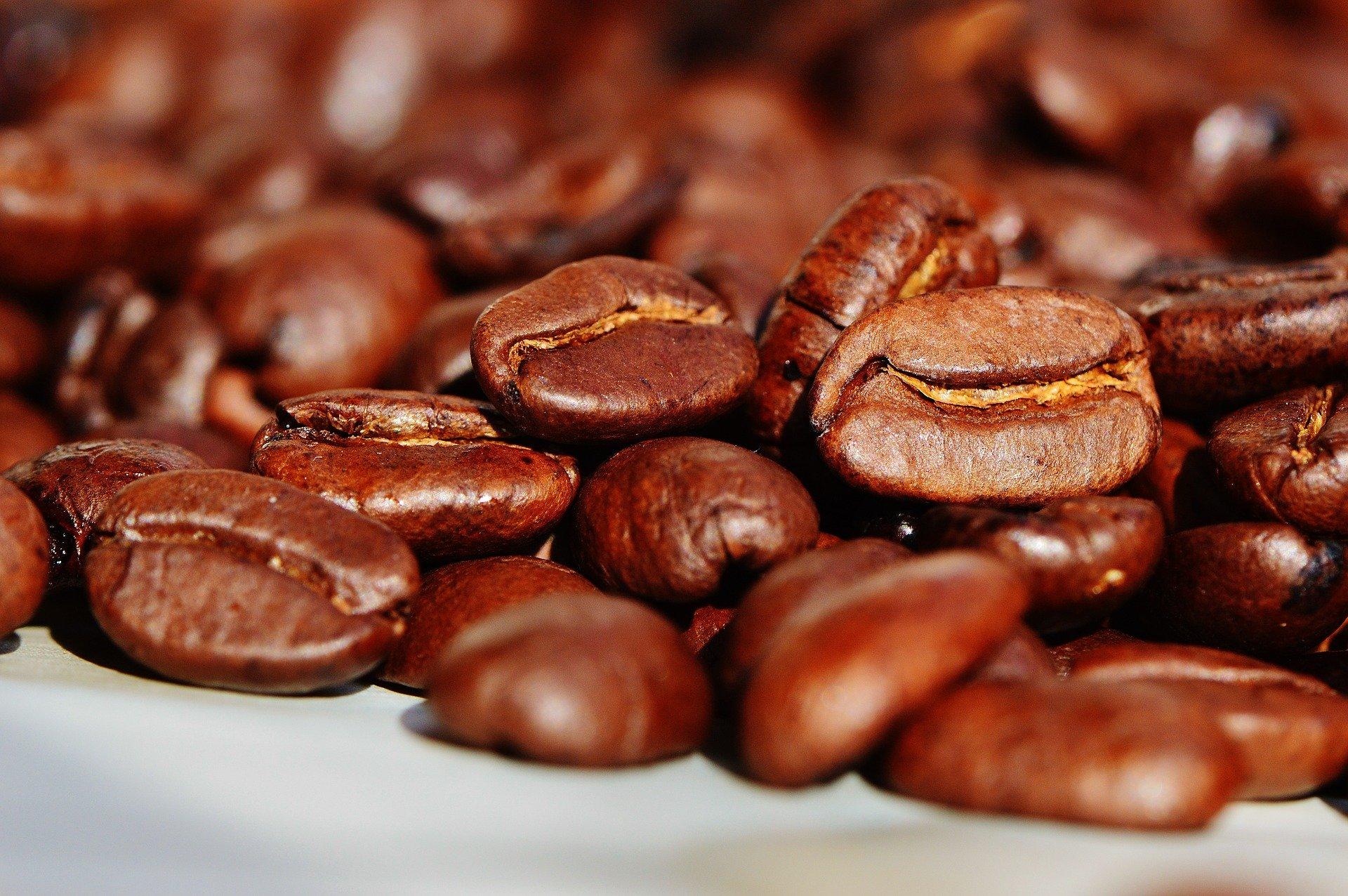 En Côte d'Ivoire, le Conseil du Café-Cacao (CCC) devrait lancer prochainement des réformes dans la filière caca