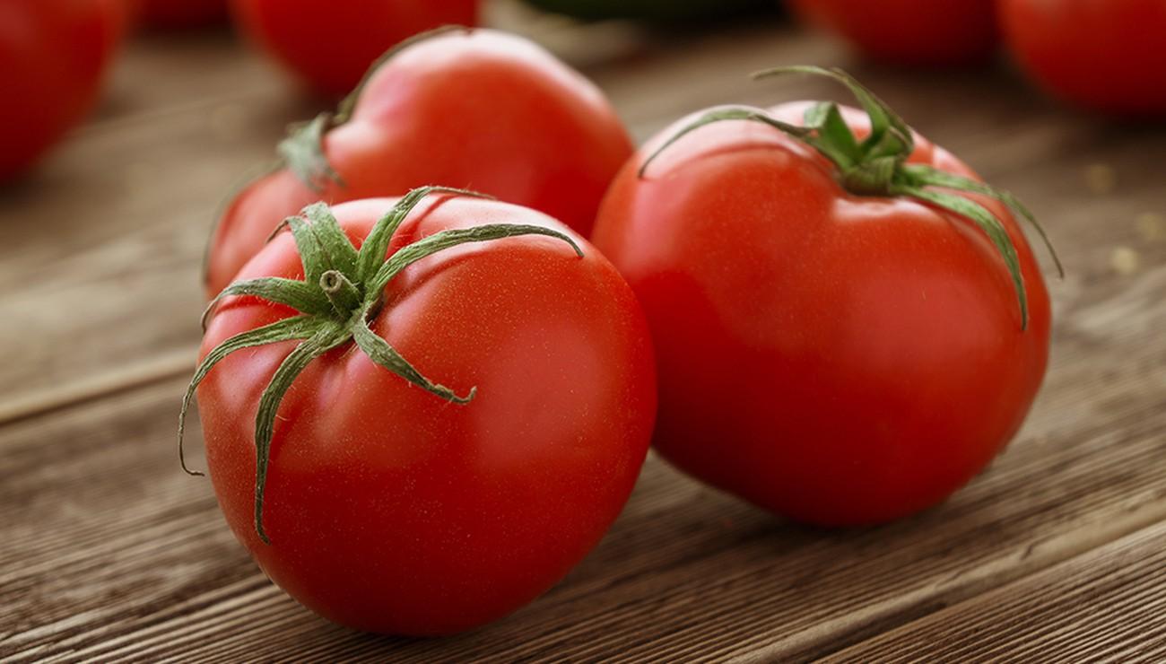 Les ventes de tomates marocaines vers l'UE ont augmenté de 17% avec plus de 272 millions de kilos