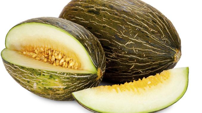 Le melon marocain fait partie des plus chers en Europe