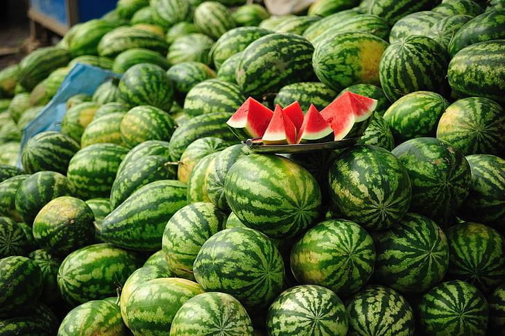 Le Maroc et le Sénégal demeurent les principaux fournisseurs de pastèques en Espagne