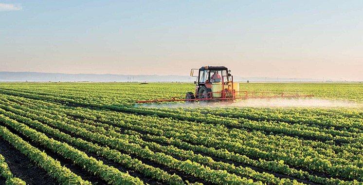 L'écosystème du machinisme agricole marocain est en péril