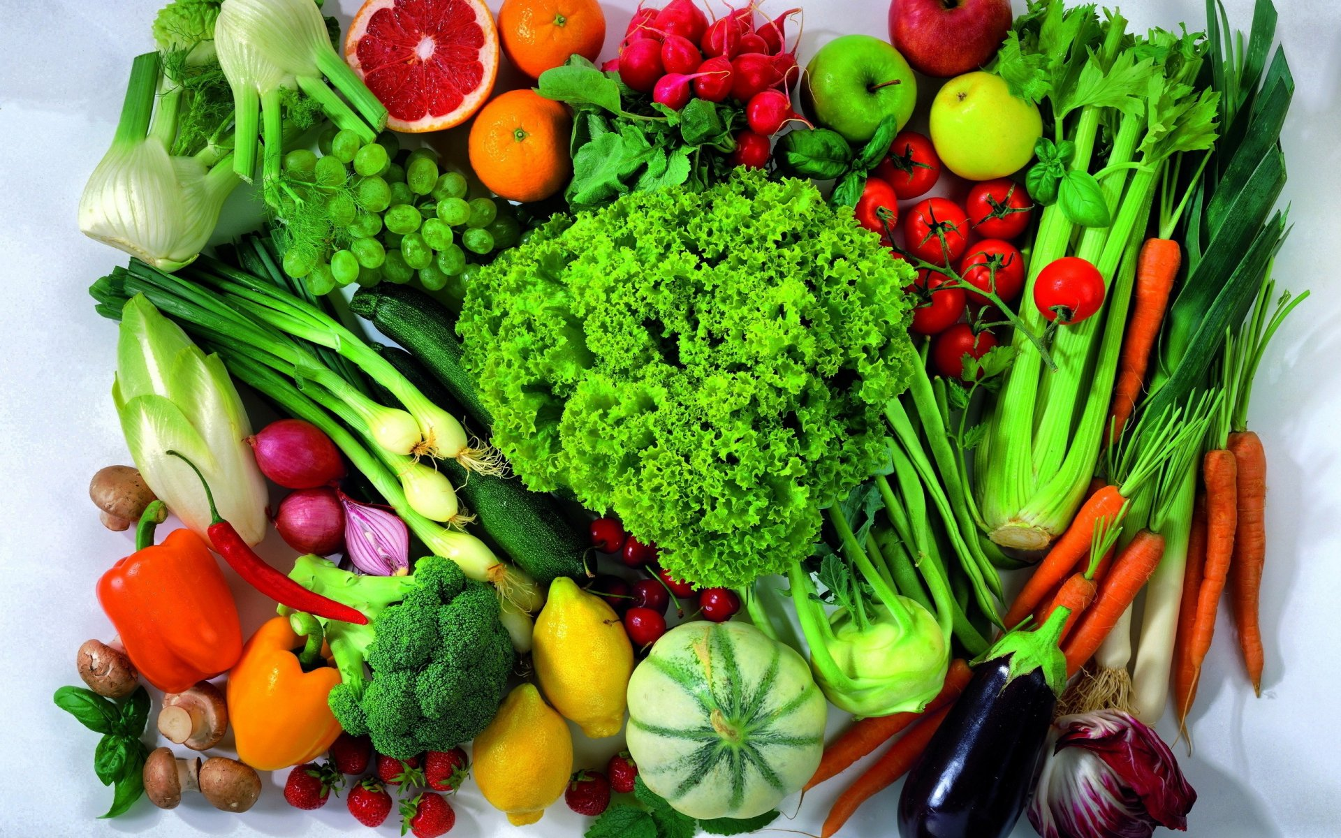 Le Maroc se démarque dans la production de légumes avec un total de 4 millions de tonnes