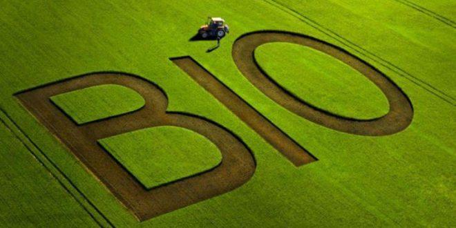 Le Maroc vise une expansion en agriculture biologique avec 300.000 hectares