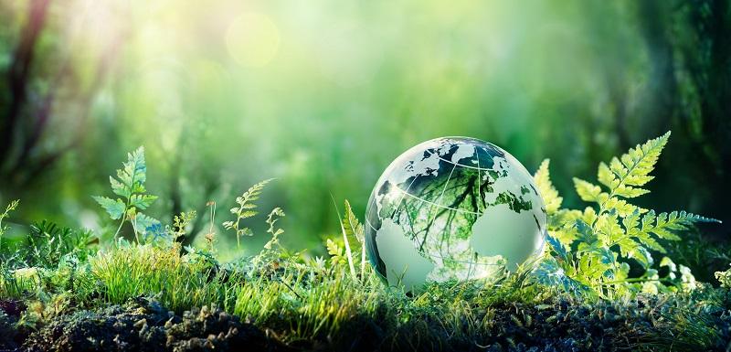 30 pays dont le Maroc ont bénéficié de 176 millions de dollars pour des projets agricoles et environnementaux