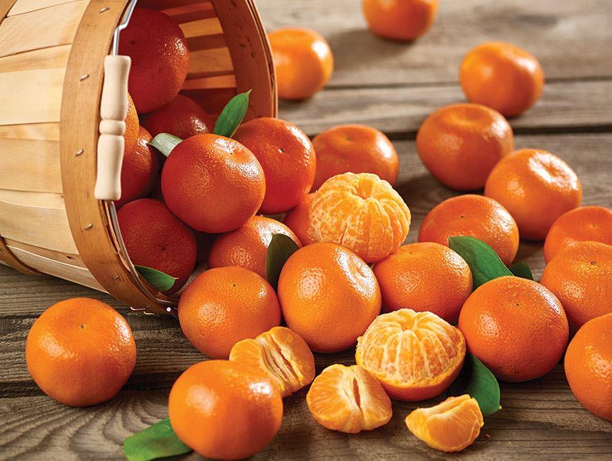 L'Espagne investi 400.000 € pour la promotion des oranges et des mandarines au canada