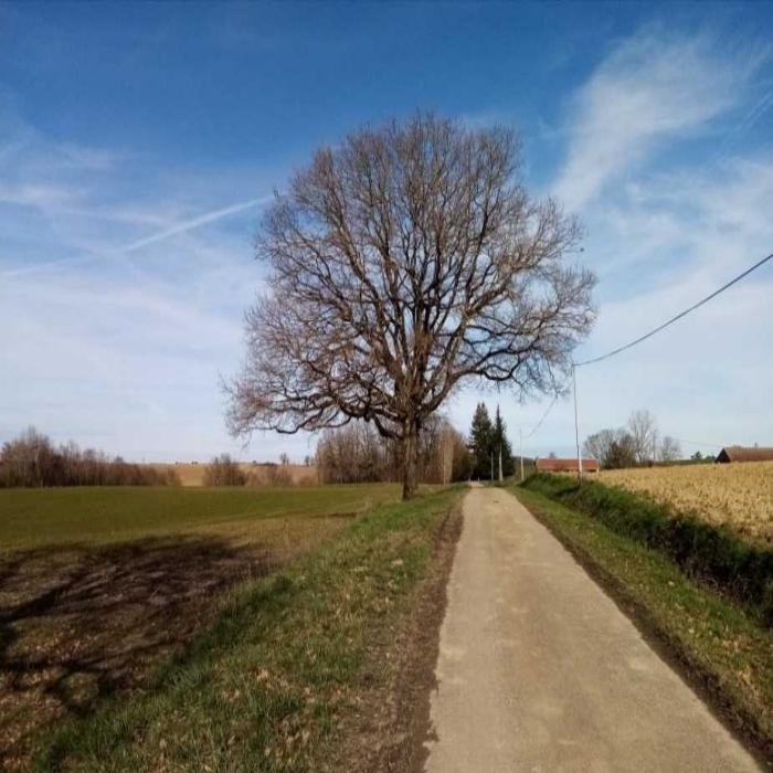 Bonjour, la campagne est belle en toutes saisons ! N'hésitez pas à partager et faire découvrir vos paysages, pour le plaisir des yeux...